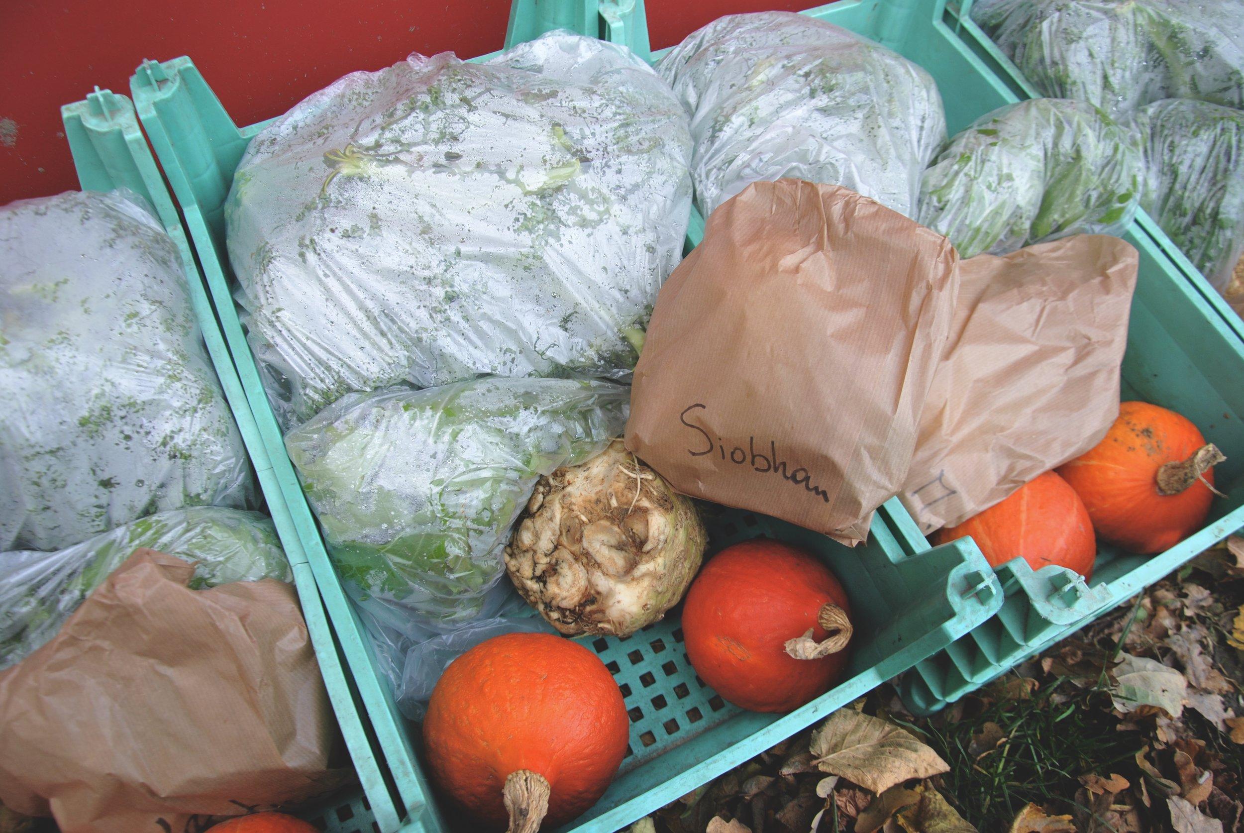 Local Organic Fruit & Veg Packets