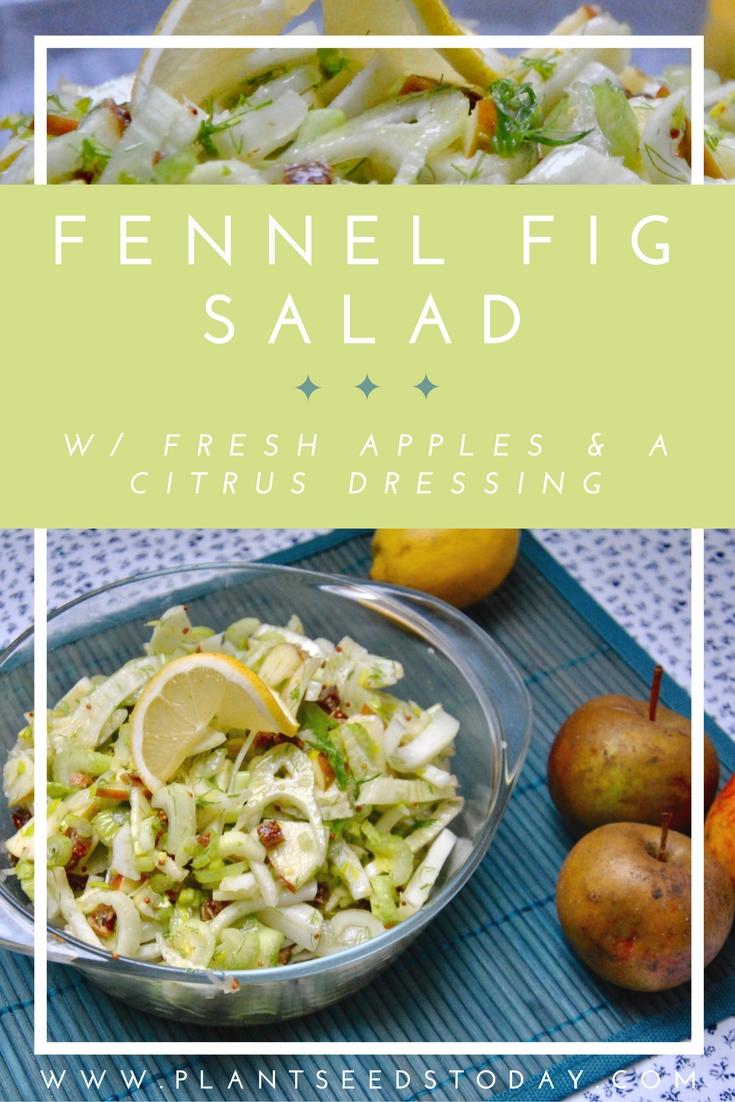 Fennel Fig Salad w/ Fresh Apples & A Citrus Dressing