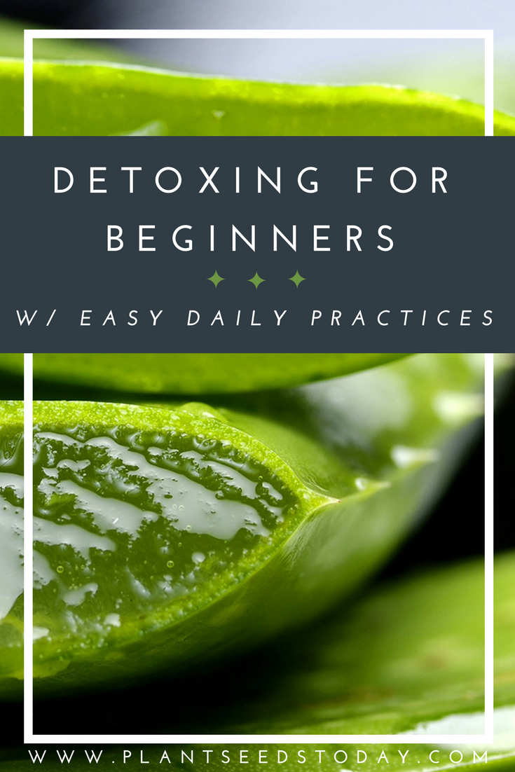 Detoxing for Beginners