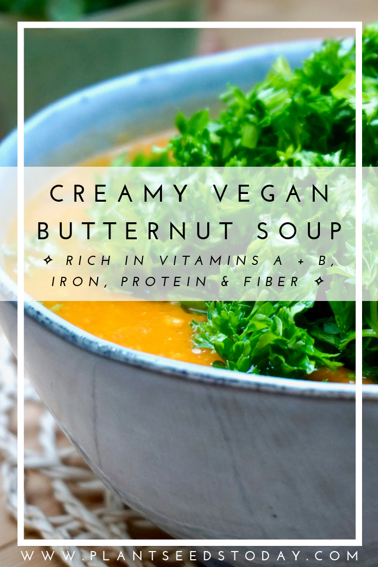 Creamy Vegan Butternut Soup