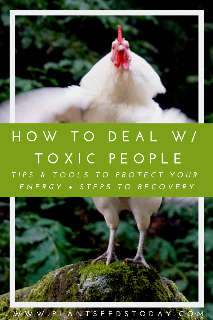 how-to-deal-w-toxic-people