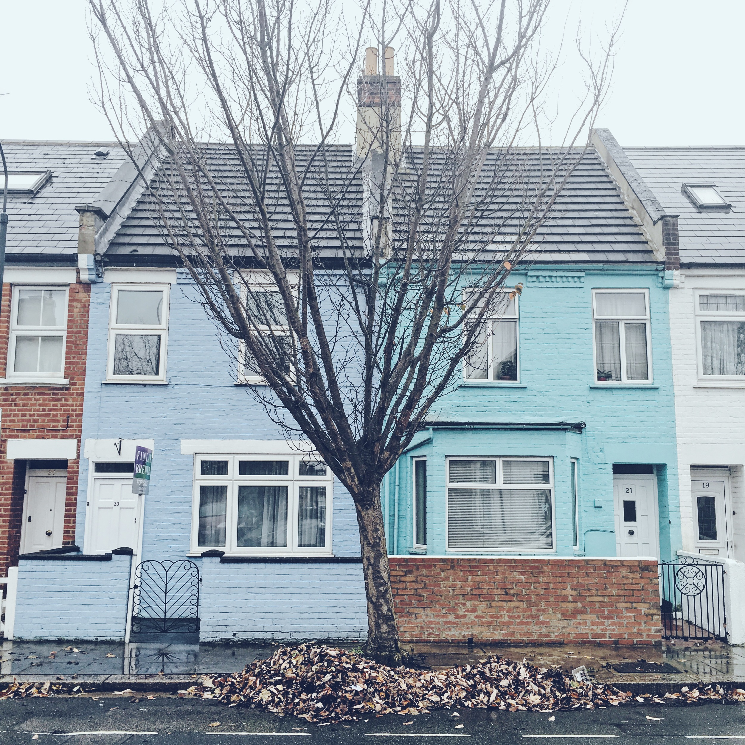 Their street was the cutest. Loved the pastel houses. Definitely brightened up the dreary weather.