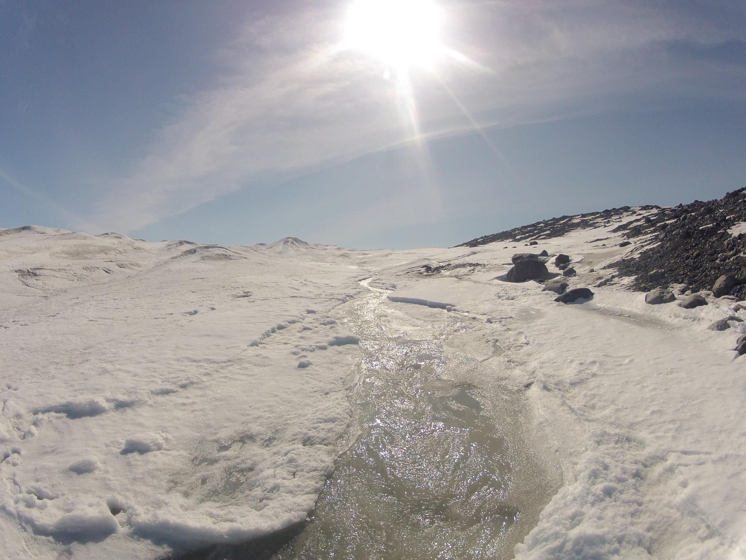 Greenland 2012 012.jpg