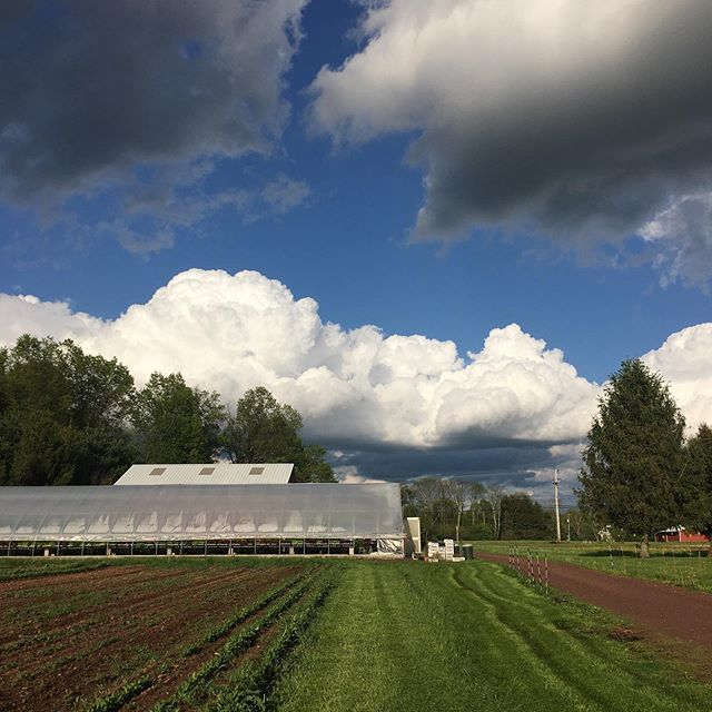 Some epic clouds while mowing Myerov Farm CSA #nofilter #clouds #farm #csa #buckscounty #agriculture #myerovfarm #myerovfamilyfarm