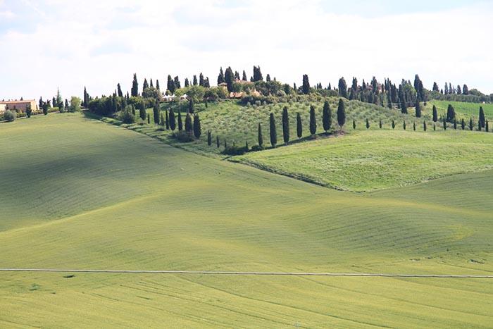 rolling-hills-of-Tuscany.jpg