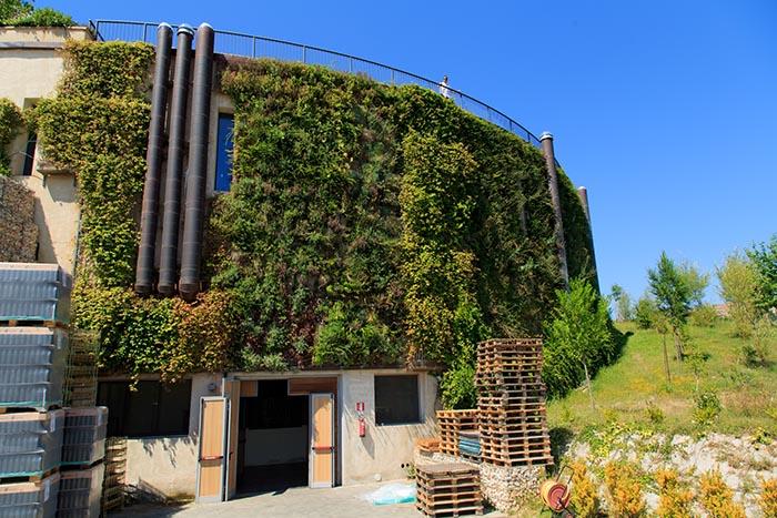 salcheto-winery-montepulciano-tuscany-wine-tour.jpg