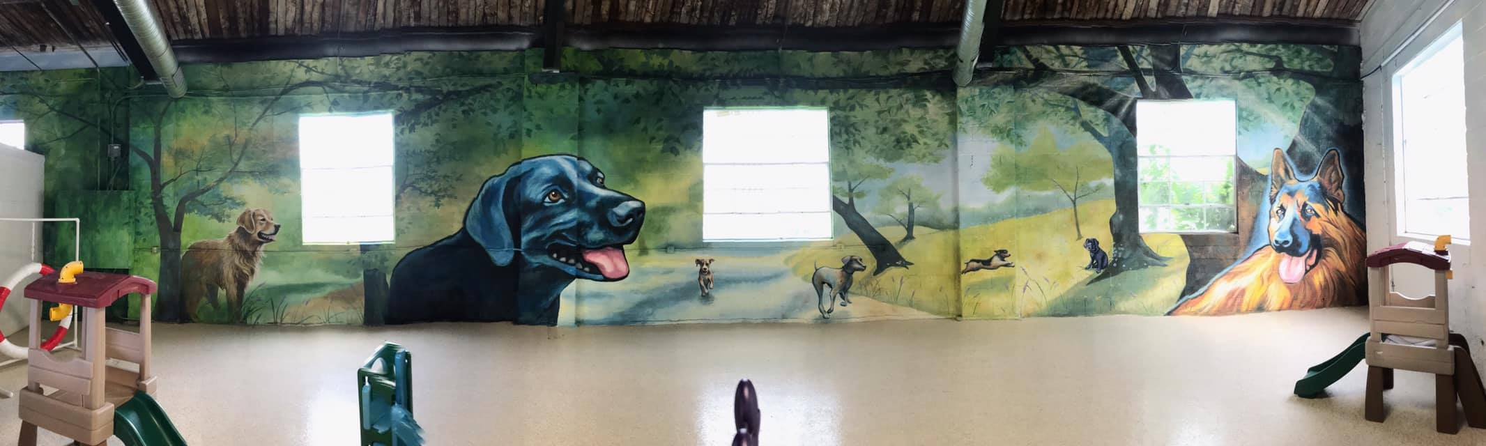 Tao's mural at  Wagging Tails Pet Resort & Spaw, West Hartford 's only indoor dog park. Focal wall completed in 2019.