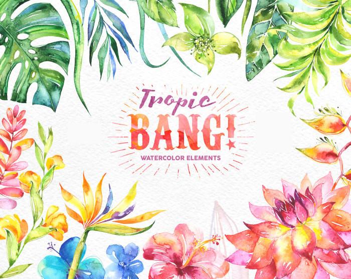 Tropic Bang