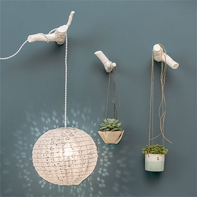 http://www.lepetitflorilege.com/catalogue/patere-branche-blanche.html