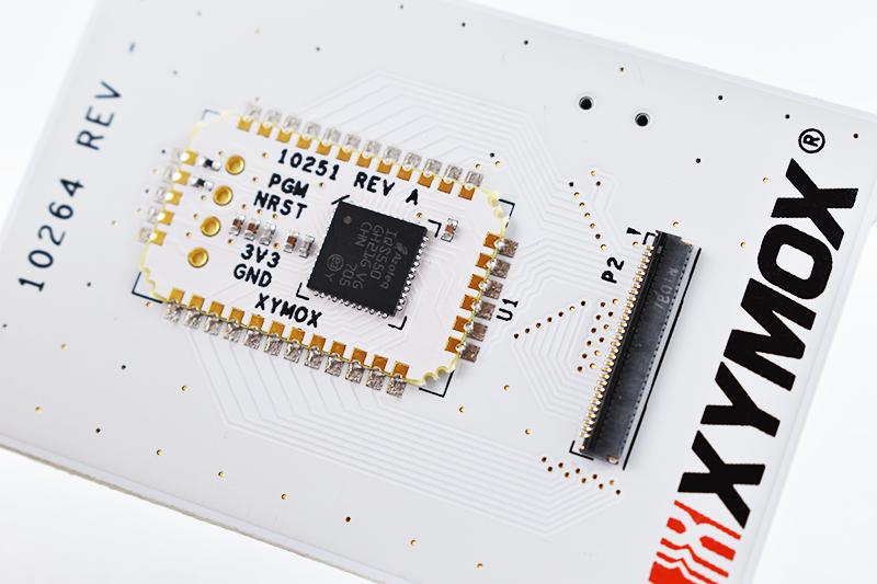 Xymox Chip 1.png