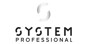 System-Professional.png