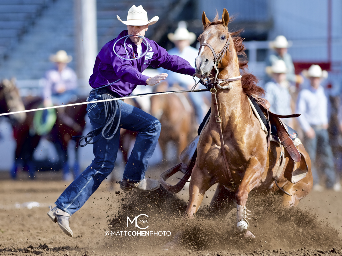 2016 WNFR: Wrangler National Finals Rodeo Qualifiers: Tie-Down Roping #2 Timber Moore