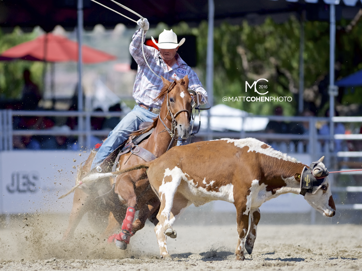 2016 WNFR: Wrangler National Finals Rodeo Qualifiers: Team Roping Heelers #4 Russell Cardoza