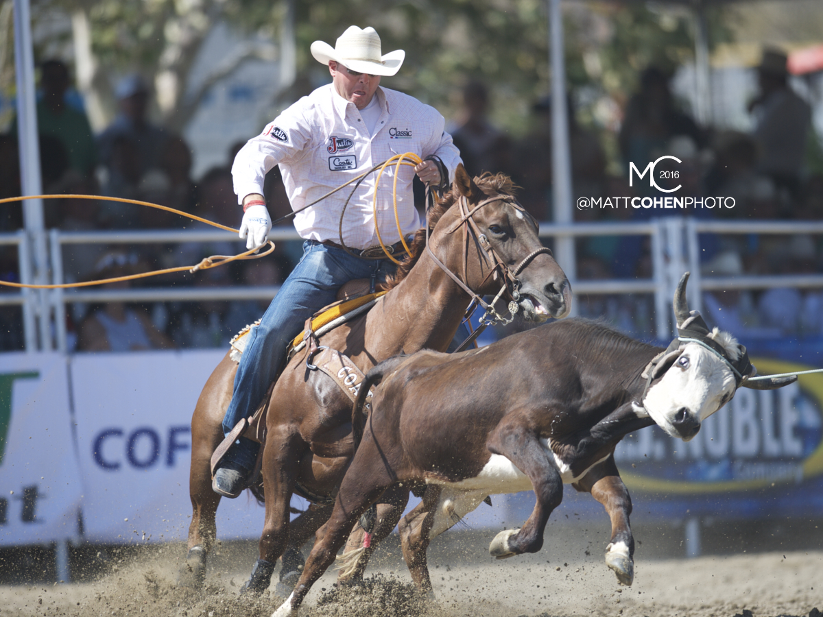 2016 WNFR: Wrangler National Finals Rodeo Qualifiers: Team Roping Heelers #8 Cory Petska