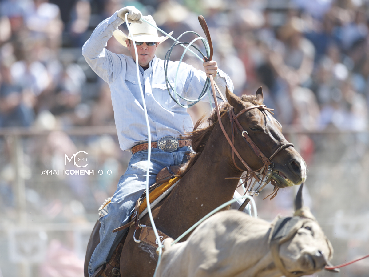 2016 WNFR: Wrangler National Finals Rodeo Qualifiers: Team Roping Heelers #11 Jake Minor