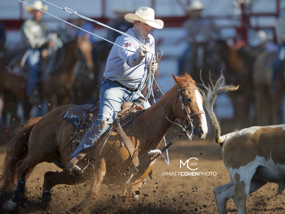 2016 WNFR: Wrangler National Finals Rodeo Qualifiers: Team Roping Heelers #14 Billie Jack Saebens