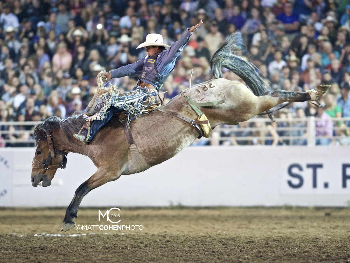 2016 WNFR: Wrangler National Finals Rodeo Qualifiers: Saddle Bronc #10 Jesse Wright