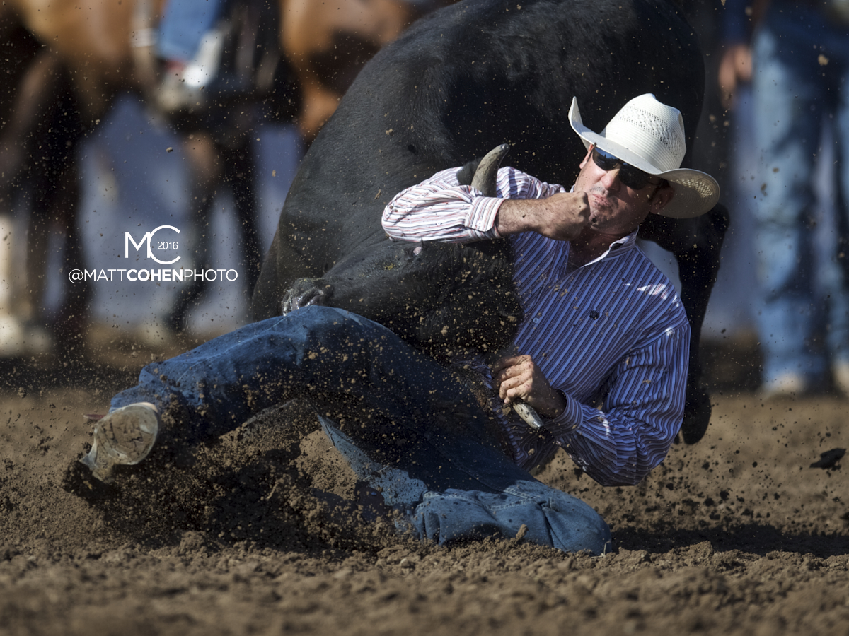 2016 WNFR: Wrangler National Finals Rodeo Qualifiers: Steer Wrestling #15 Cody Cabral