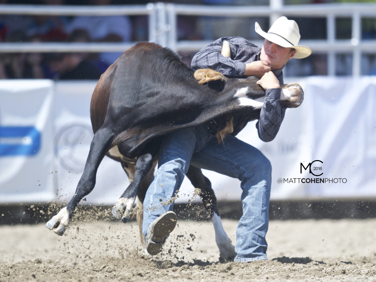 2016 WNFR: Wrangler National Finals Rodeo Qualifiers: Steer Wrestling #4 J.D. Struxness