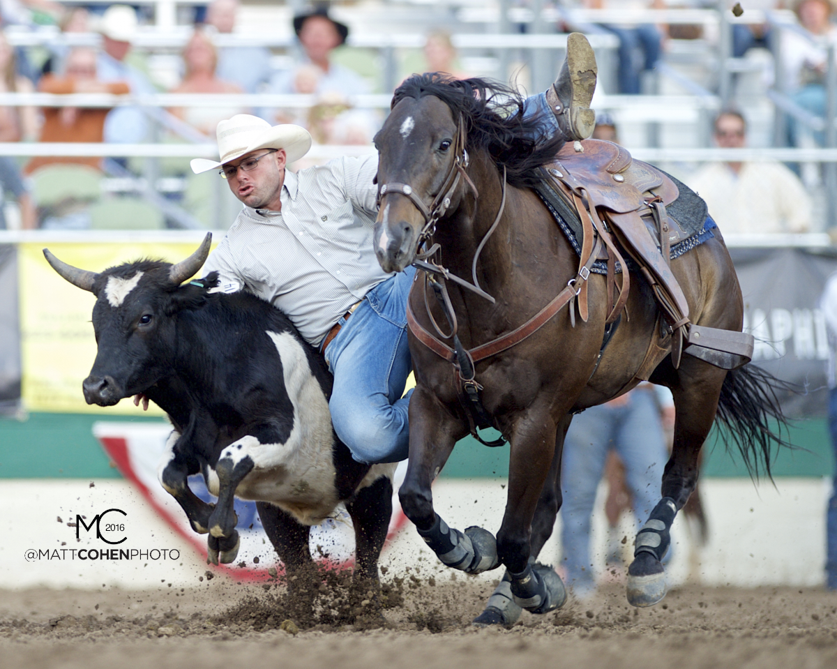 2016 WNFR: Wrangler National Finals Rodeo Qualifiers: Steer Wrestling #12 Matt Reeves