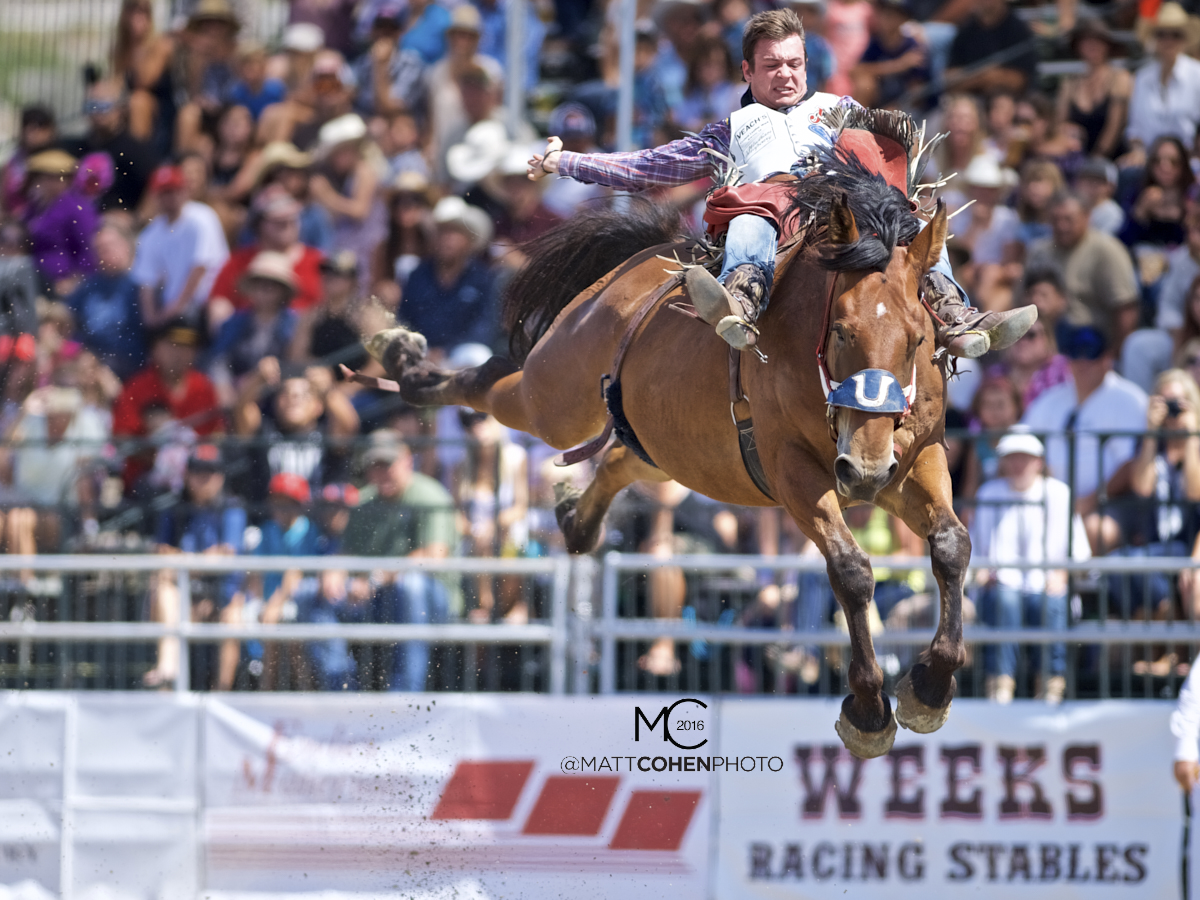2016 WNFR: Wrangler National Finals Rodeo Qualifiers: Bareback #1 Tim O'Connell