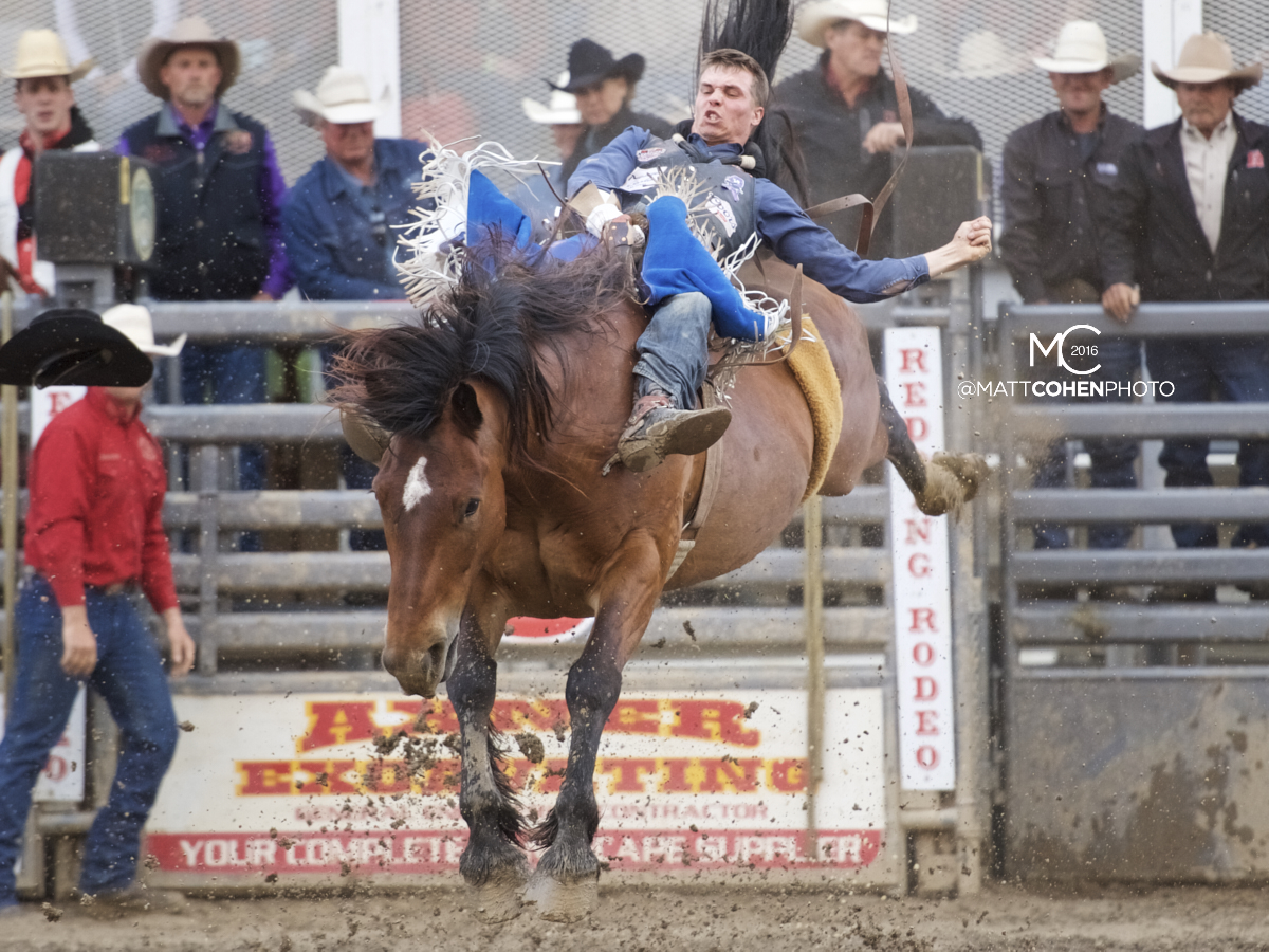 2016 WNFR: Wrangler National Finals Rodeo Qualifiers: Bareback #2 Orin Larsen