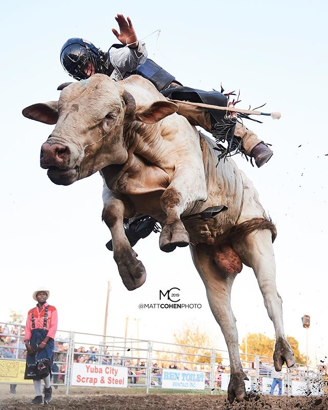 1 or 2? ⬅️ @awilliams_probullrider / 833/6 of @flyingurodeo @marysville_stampede 2019