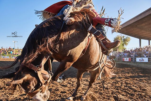 There's a first time for everything, and yesterday was the first time I lost a bronc in the sun. Unplanned sub-1-foot pass. .. @chadgrodeo @marysville_stampede 2019