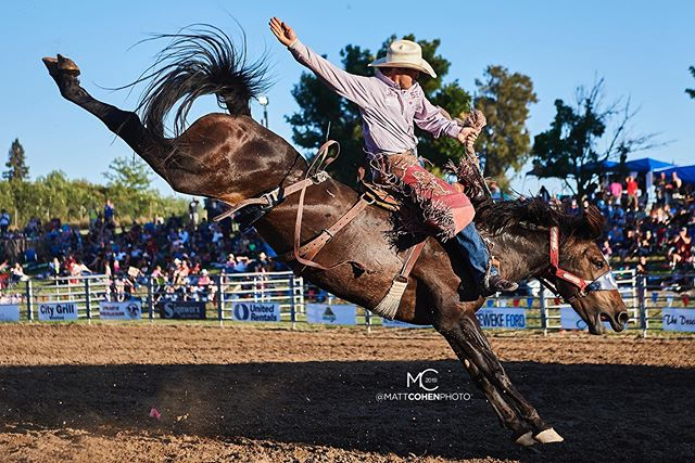 .@cameron_messier_ / 2407 of @flyingurodeo @marysville_stampede 2019