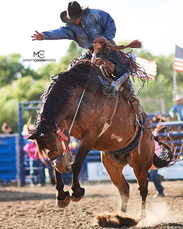 Ad Bugenig / 705 Clamper of @flyingurodeo @marysville_stampede 2019
