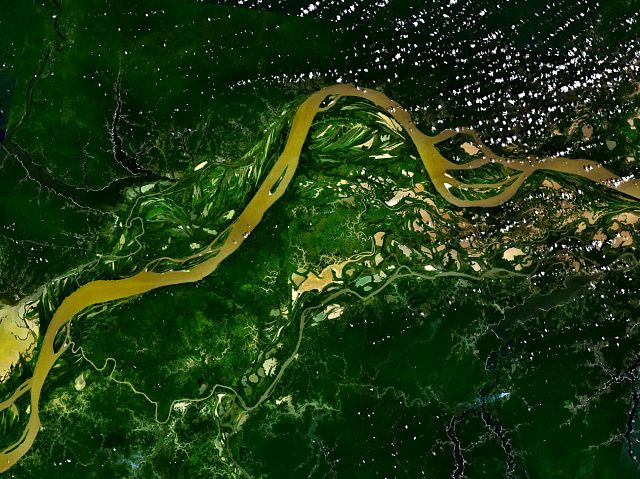 Amazon River and Rainforest. Photo in the Public Domain from  NASA .
