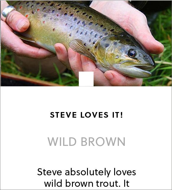 wild_brown_trout_steve_edge