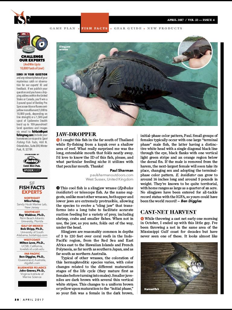 Sportfish_4webnews.png