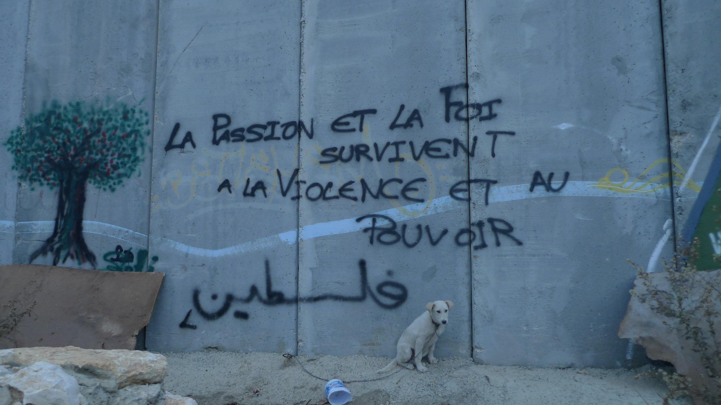 BARDI_Palestine.JPG