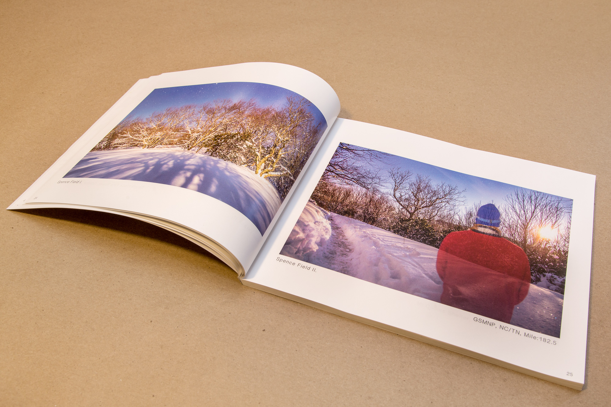 Book_Interior.jpg