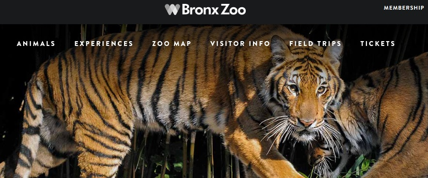 World Famous Bronx Zoo less than 20 minutes away