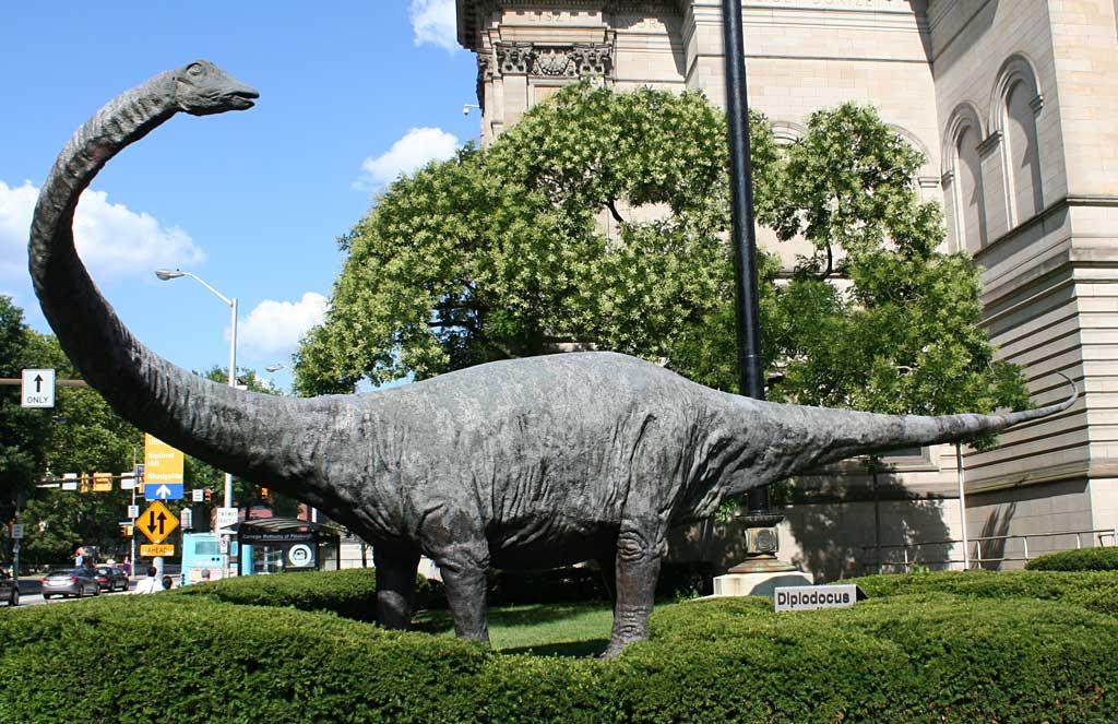 diploducus-dinosaur-outside-carnegie-museum-of-natural-history-in-pittsburgh-pennsylvania-july-2011.jpg