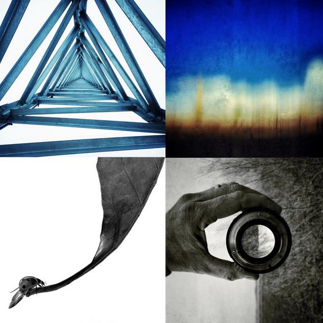 Clockwise (Triangulate, Landscape, Handscape, Ladybug)