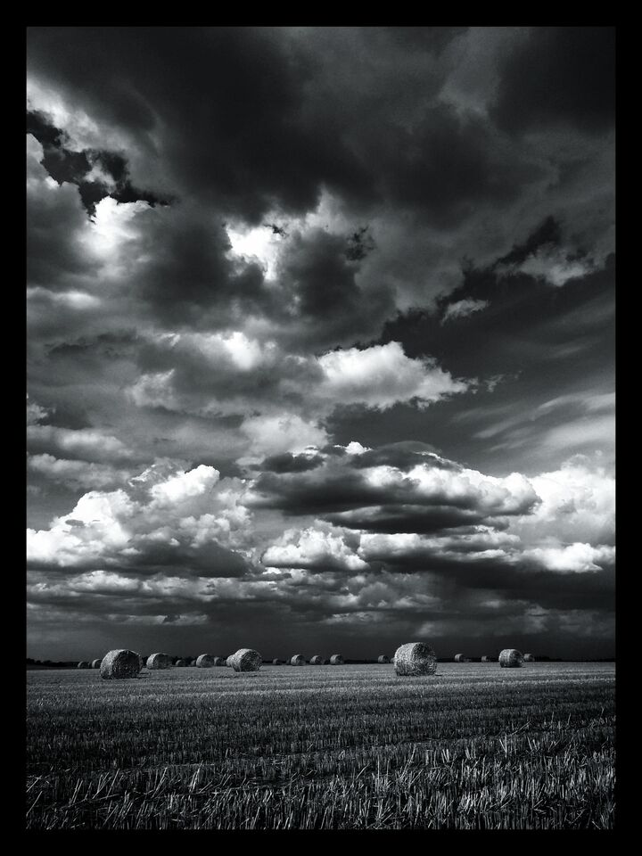 Big Sky  by Allan Bailey