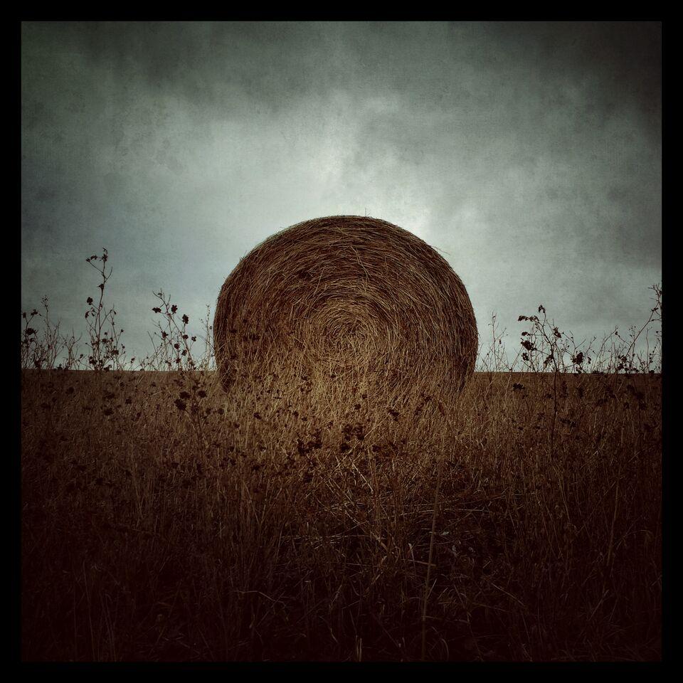 'Alone' by Allan Bailey