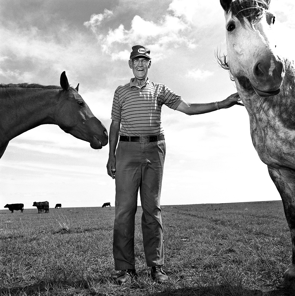 'Ernie's Horses' by Curtis Trent