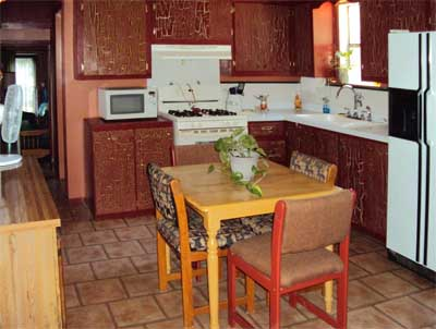 cabinkitchen2_edited-1.jpg