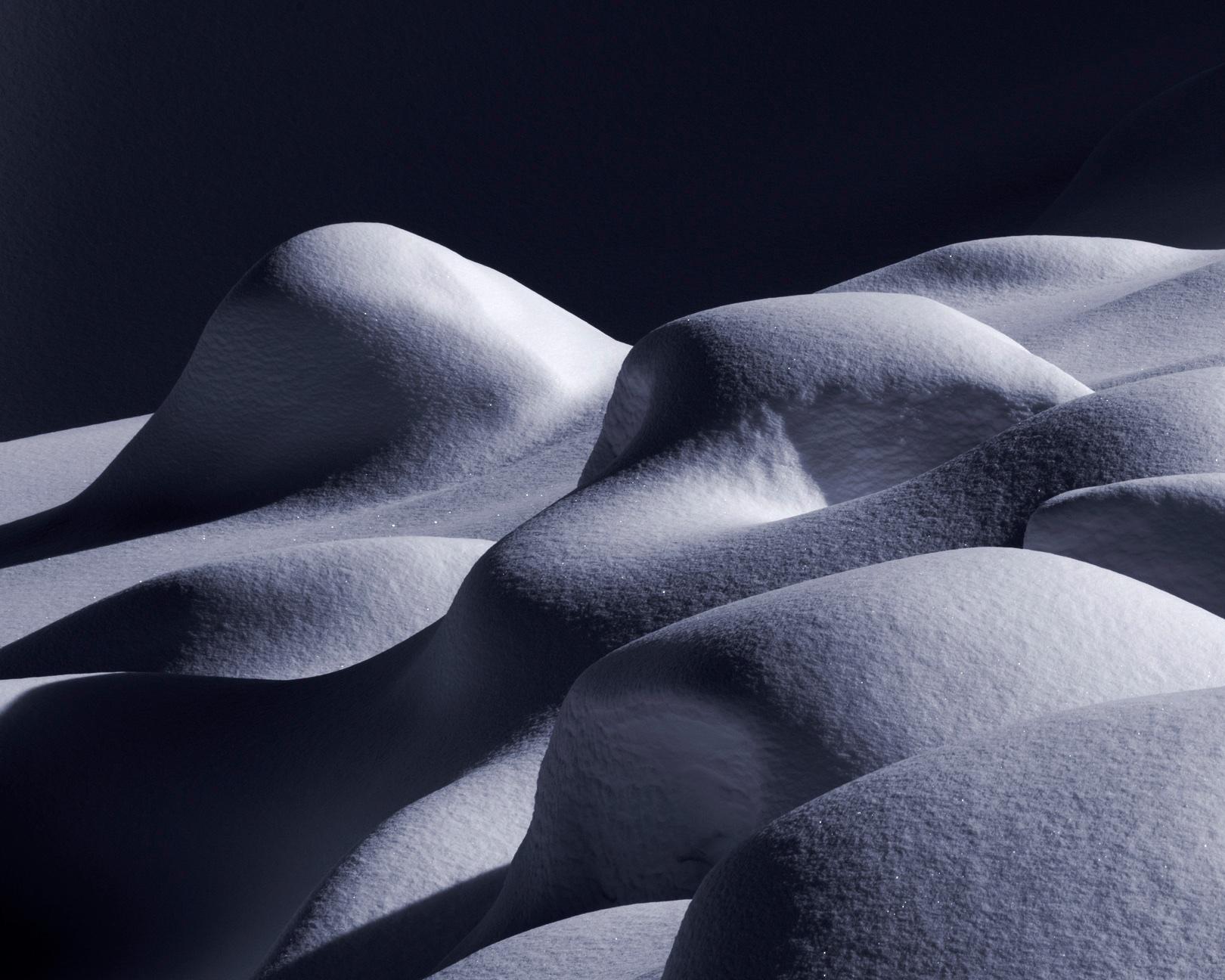 Sensuous Snow, I 2014