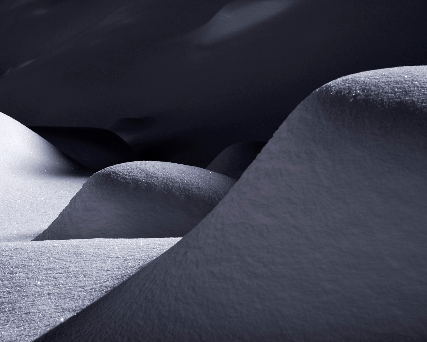 Sensuous Snow III, 2013