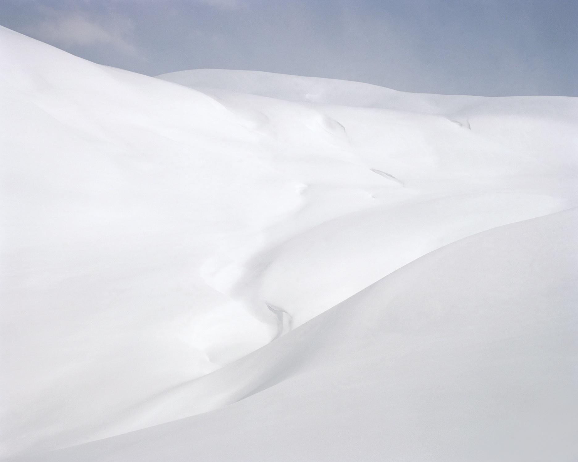 Snowscape, 2010