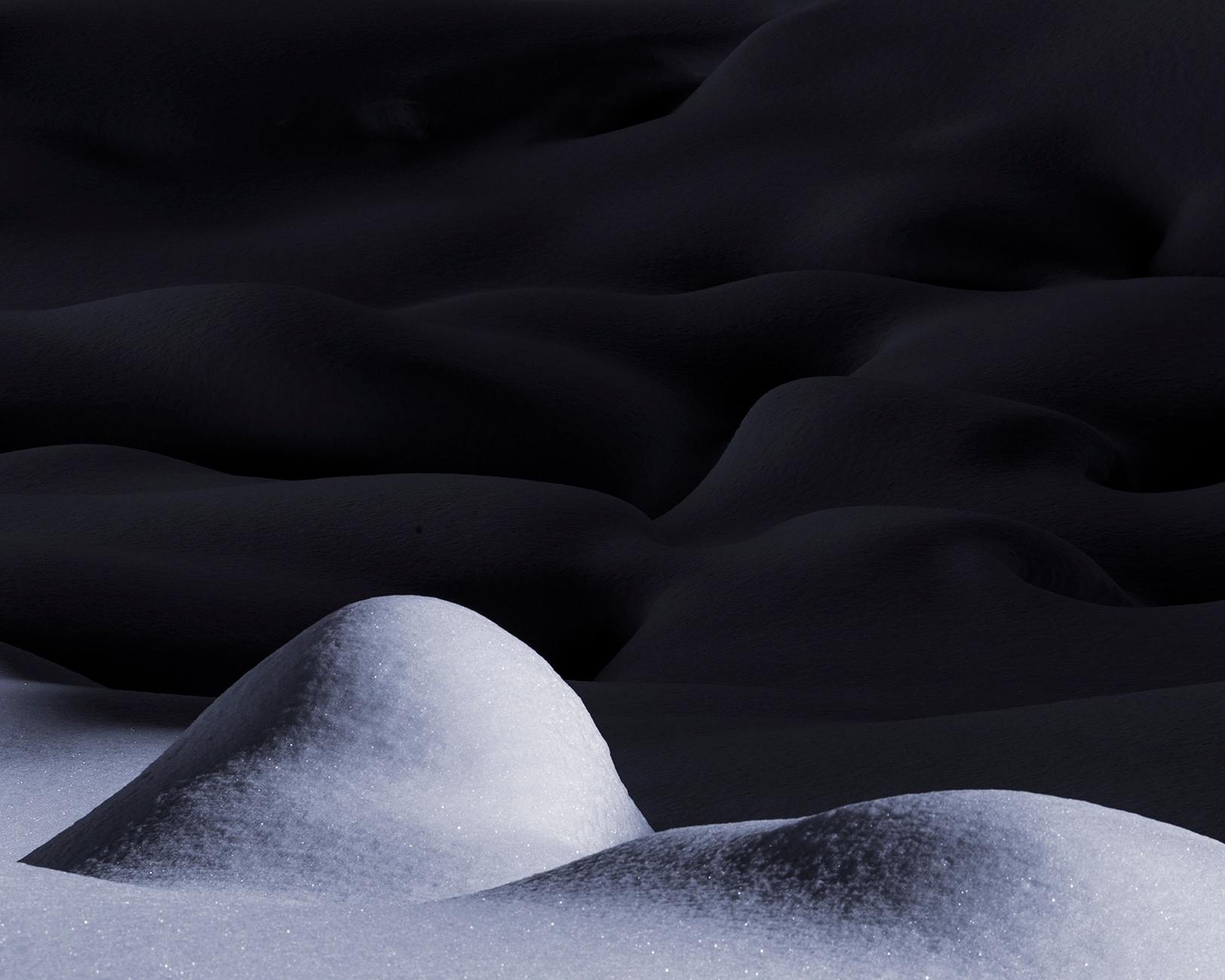 Sensuous Snow IX, 2014