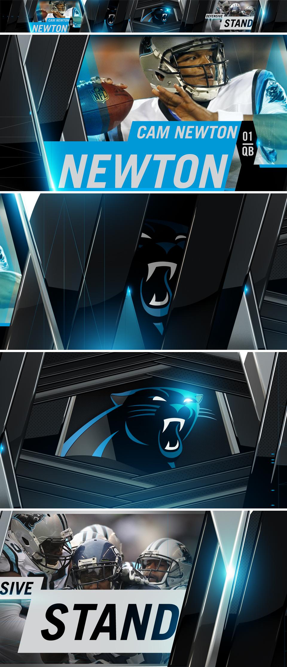 Panthers03.jpg
