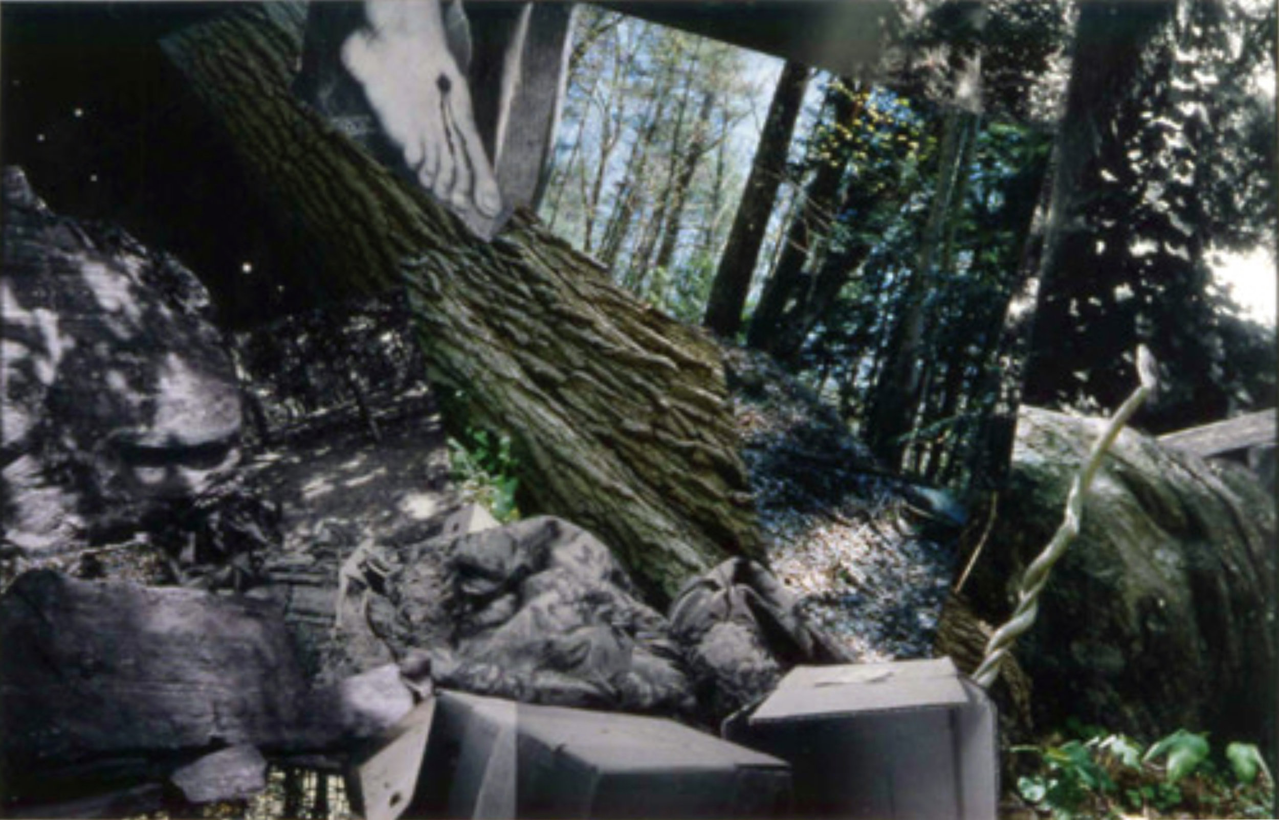 John O'Reilly  Climber , 2008 polaroid, color coupler, halftone montage 11h x 17w in
