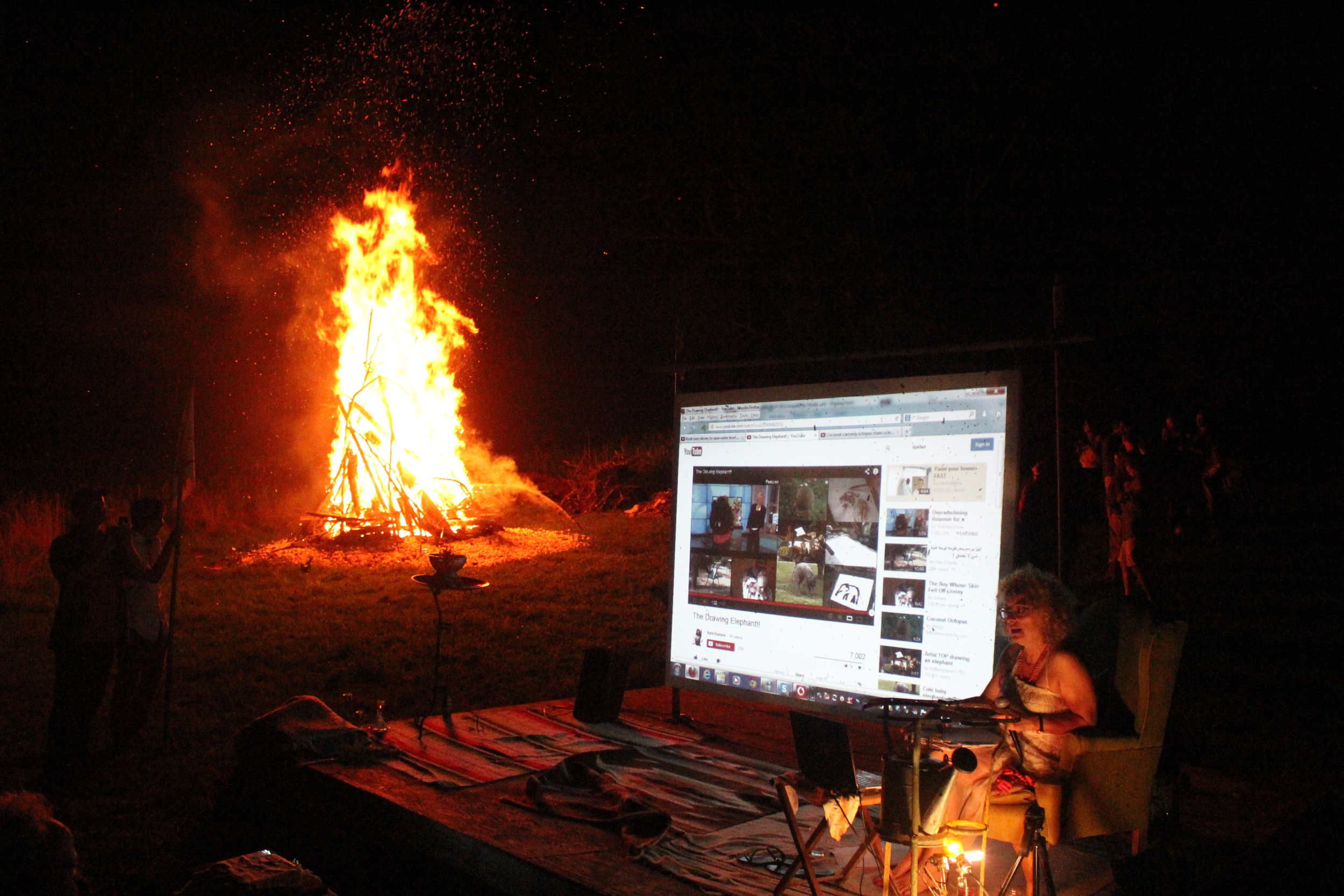 ML_finalnightfirelecture_2013.jpg