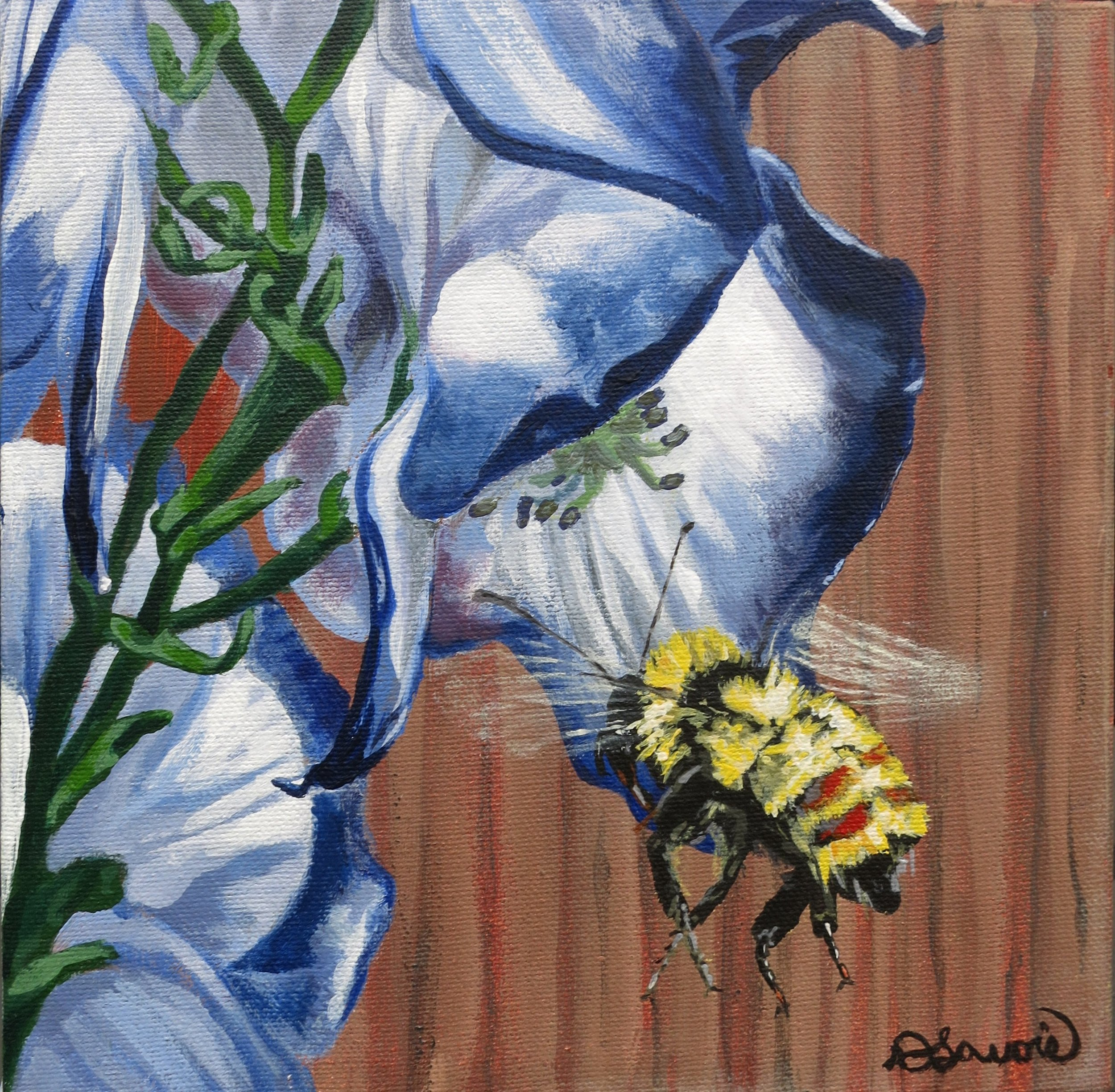 """Landing Gear        Acrylic on Canvas - 8"""" x 8""""     Both the original and limited edition prints are available.   It is marvelous watching bees make their way to a flower then do their quick acrobatic maneuvers to """"jump"""" inside!"""